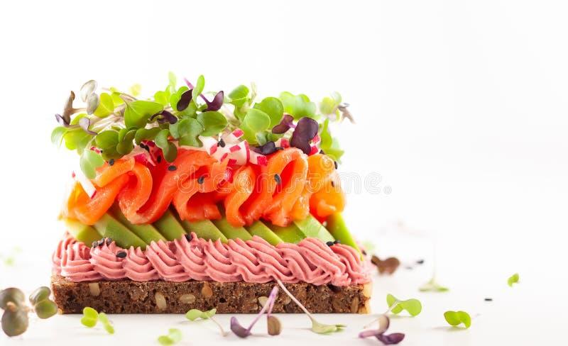 Panino gastronomico con il salmone affumicato, l'avocado, il hummus della barbabietola ed i germogli fotografia stock libera da diritti