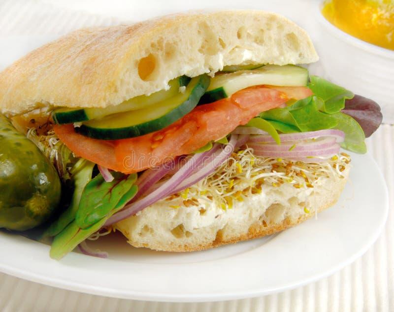 Panino vegetariano fotografie stock libere da diritti