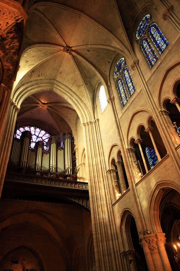 paniusia De Notre Paris zdjęcia stock