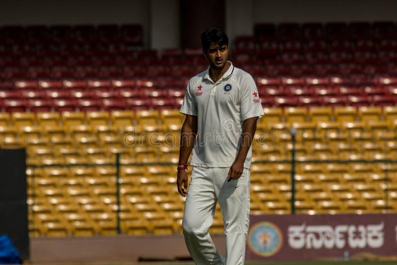 Pankaj Singh Cricketer royaltyfria foton