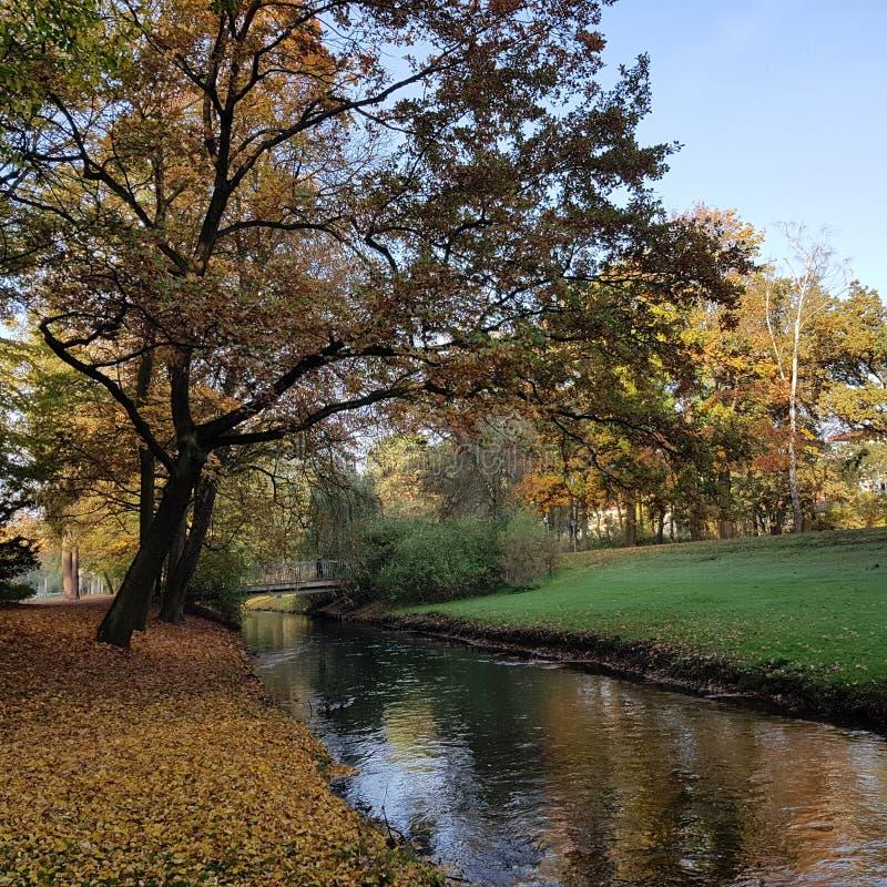 Panke小河在潘科在柏林在秋天 免版税库存照片