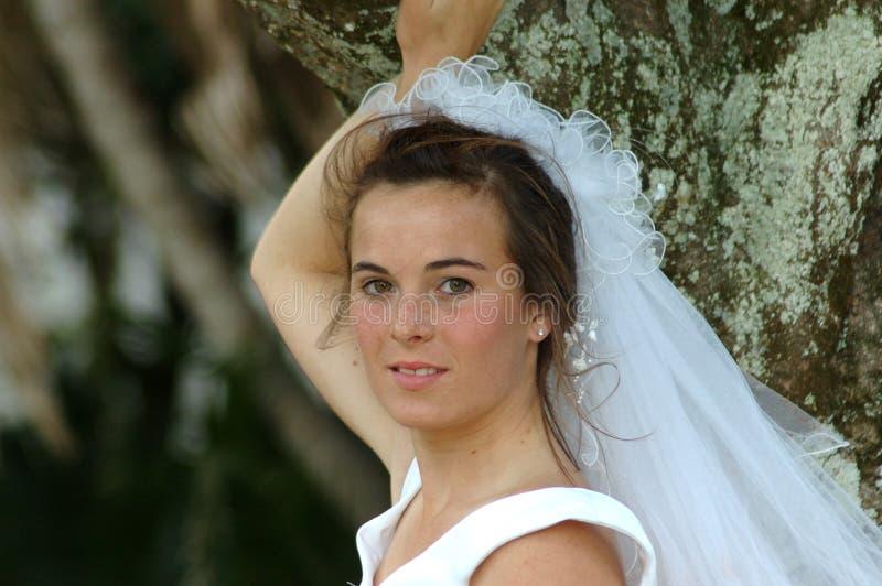 pann młodych piękni potomstwa fotografia royalty free