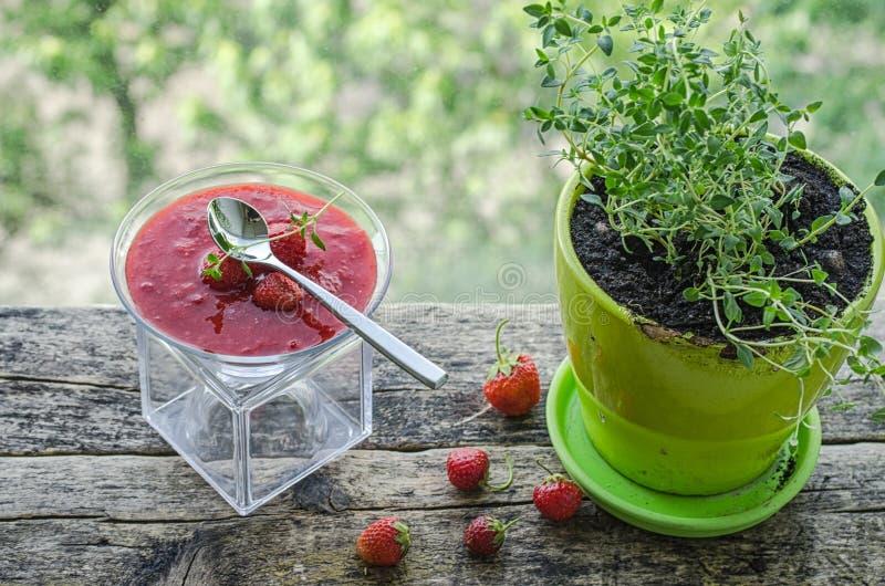 Panna cotta med jordgubbesås royaltyfria foton