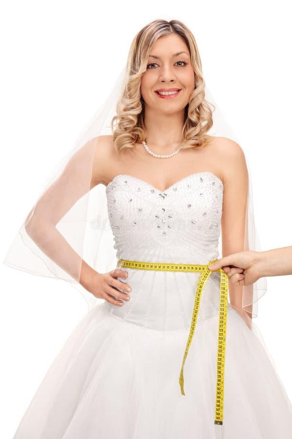 Panna młoda mierzy jej talię w sukni i ręka fotografia stock
