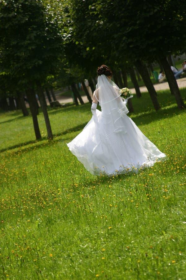 panna młoda park zdjęcia royalty free