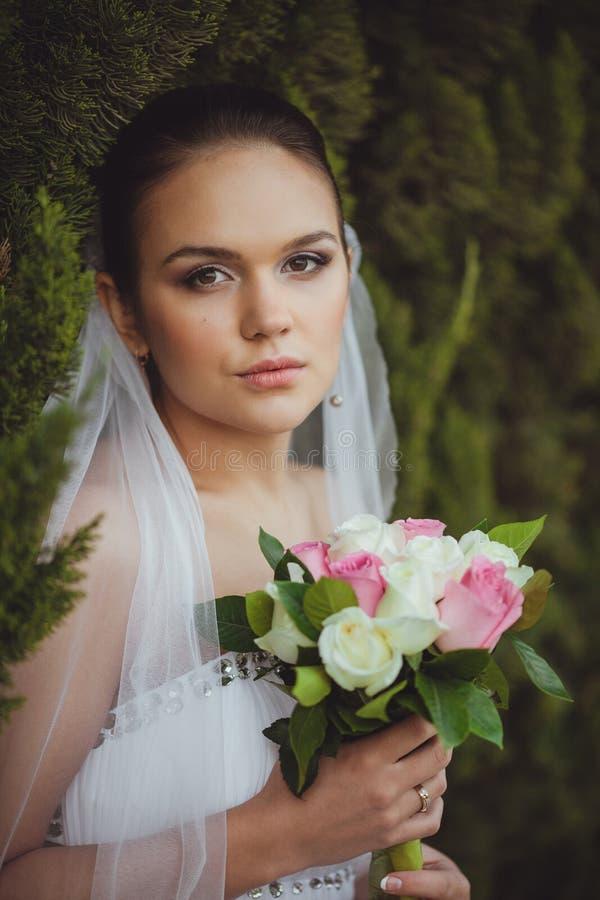 Panna młoda portret nad zielonymi drzewami plenerowymi zdjęcie royalty free