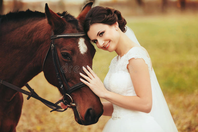 Panna młoda prowadzi głowa brown koń zdjęcia stock