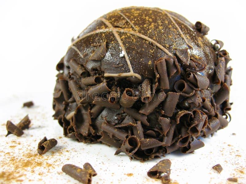 Panne de truffe de chocolat image libre de droits