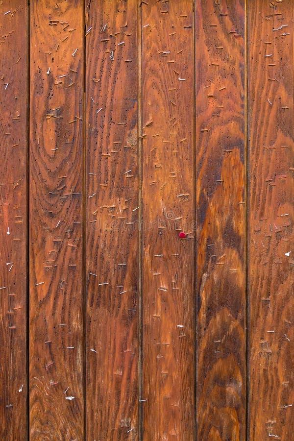 Panneau d'affichage en bois avec de vieilles agrafes et goupille Vintage superficiel par les agents image libre de droits