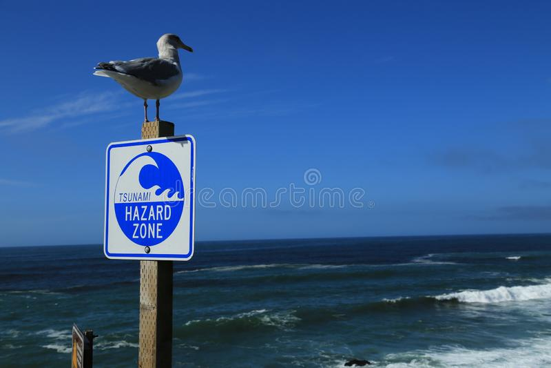 Panneau d'avertissement de zone de risque de tsunami signalé le long de la côte ouest de la Californie, de l'Orégon et de Washing images stock
