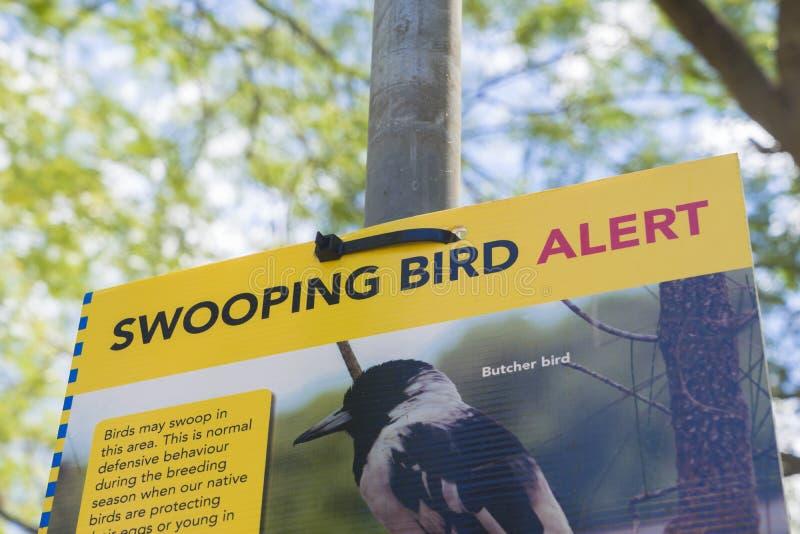 Panneau d'avertissement swooping d'oiseau photo stock