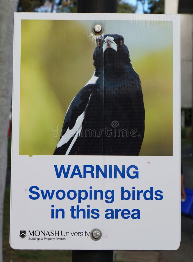 Panneau d'avertissement Swooping d'oiseaux image stock