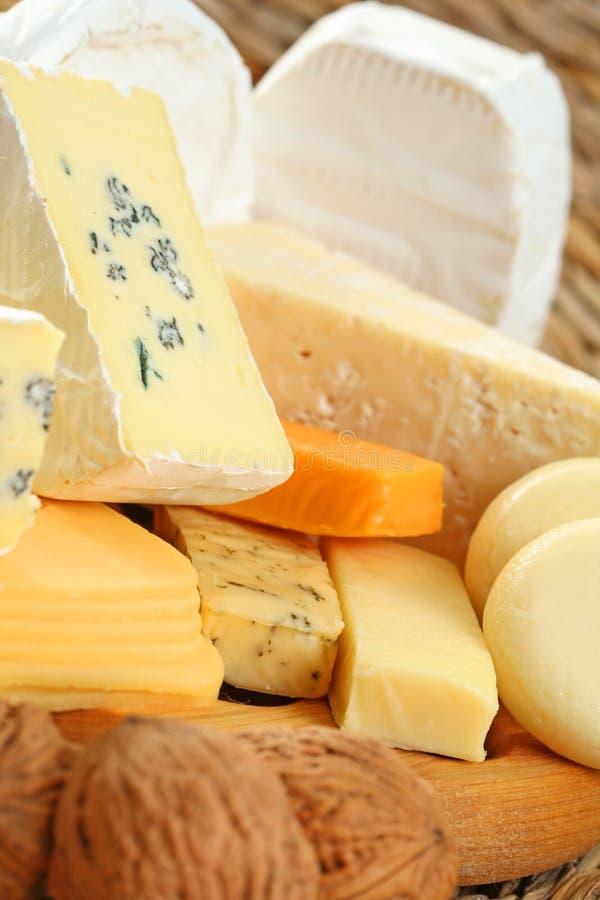 Panneau de fromage photo libre de droits