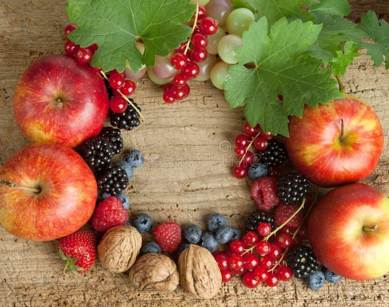 Panneau de Thankgiving avec des baies d'automne photo stock