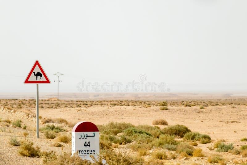Panneau routier de croisement de chameau en Tunisie, Afrique photos stock
