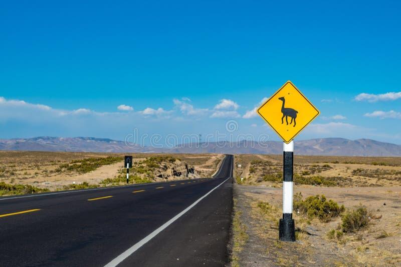 Panneau routier de croisement de lama au Pérou, Amérique du Sud images libres de droits