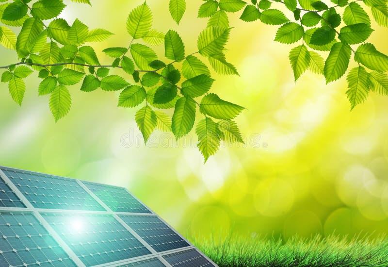 Panneau solaire en vert photographie stock libre de droits