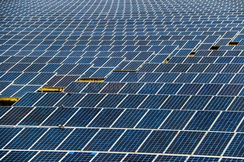 Panneau solaire produisant de l'?nergie propre de l'?lectricit? photographie stock libre de droits