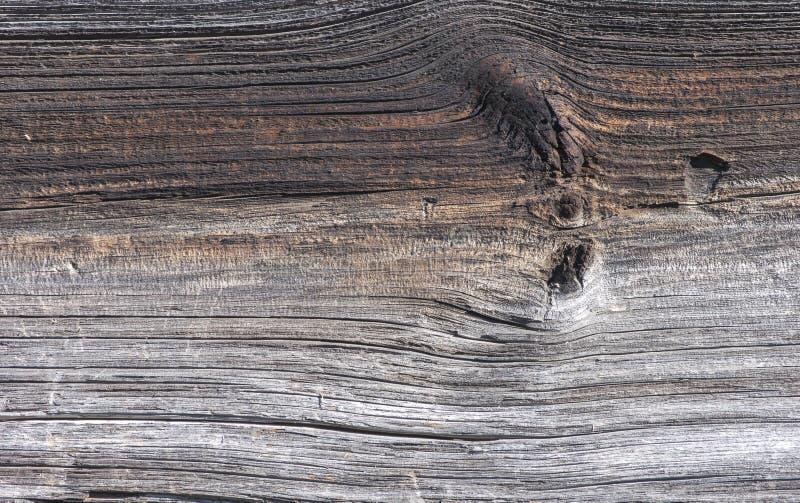 Panneau superficiel par les agents de pin sur une grange images stock