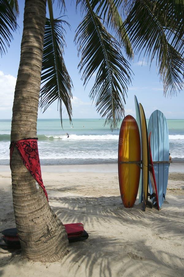 Panneaux de Bali photo stock