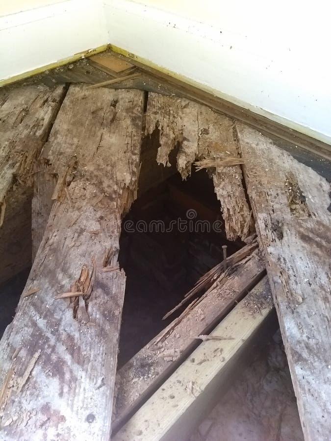 Panneaux de plancher putréfiés photos stock