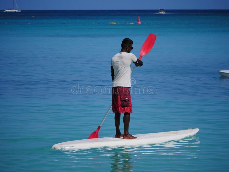 Panneaux de surf en position debout photographie stock libre de droits