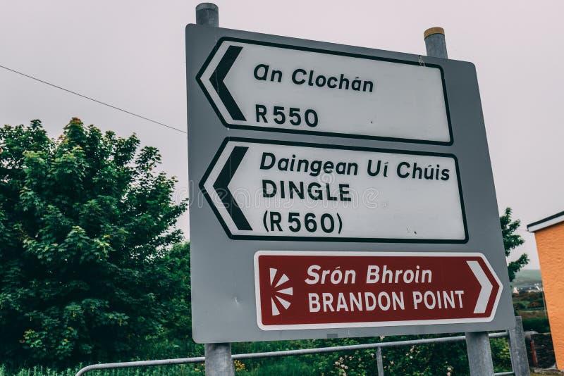 Panneaux routiers à Brandon Point, à un oiseau populaire et à la tache de observation de vie marine sur la péninsule de Dingle da photographie stock libre de droits