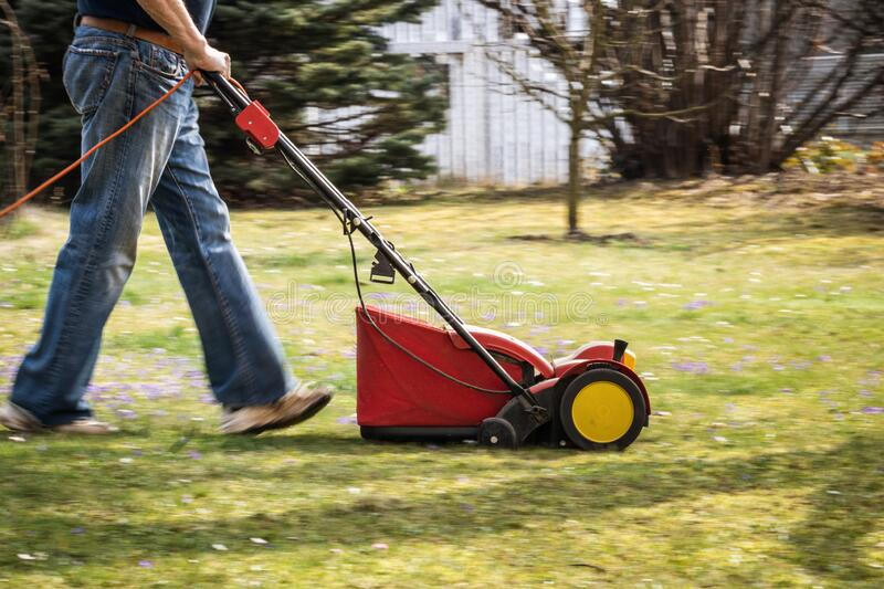 Panning shot of lawn mower verticutting in garden stock photography
