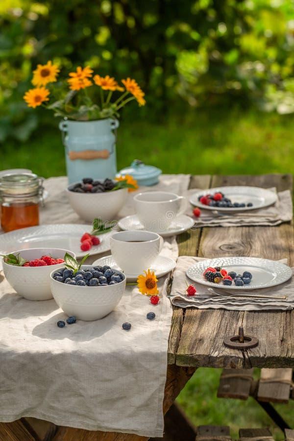 Pannkakor med ny blåbär och honung i sommarträdgård arkivbild