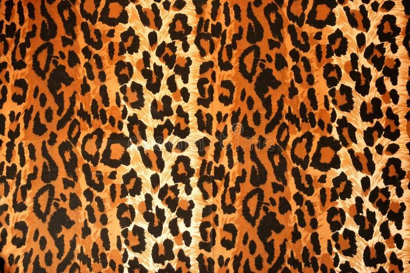 Panno del leopardo fotografia stock libera da diritti