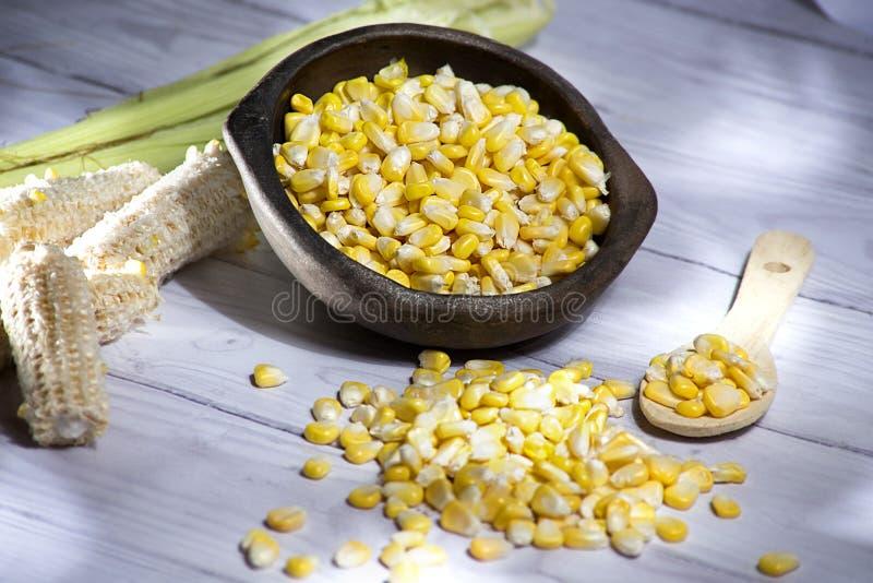 Pannocchia di granoturco e grani gialli del cereale in vaso di argilla sullo zea mays di legno bianco del fondo fotografie stock