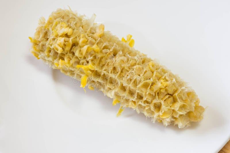 Pannocchia di granturco nuda di un cereale giallo della caramella dopo il cibo in un piatto bianco del piattino Chiuda sul colpo immagini stock libere da diritti