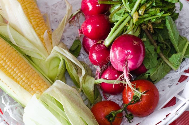 Pannocchie gialle dolci di mais, dei pomodori dolci rossi e dei ravanelli organici freschi fotografia stock libera da diritti