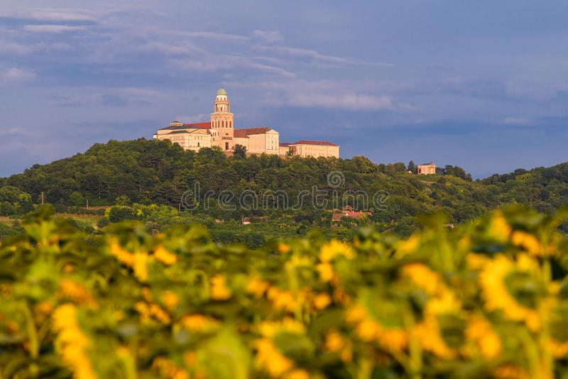 Pannonhalma Archabbey with sunflowers field. In Hungary. Beautiful sunflowers on farmfield royalty free stock image