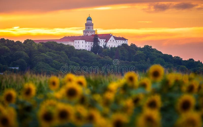 Pannonhalma Archabbey with sunflowers field at sunset time. In Hungary. Beautiful sunset on the sunflower farmfield stock images