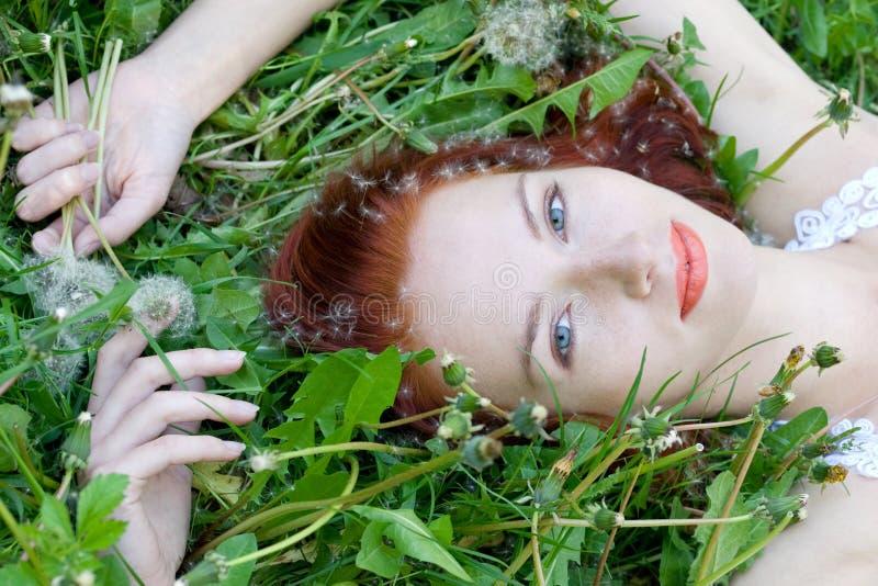 panny młodej trawa zdjęcia stock