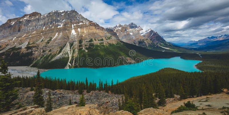 Pano piękny błękitny Peyto jezioro w Banff parku narodowym w Kanada zdjęcia royalty free