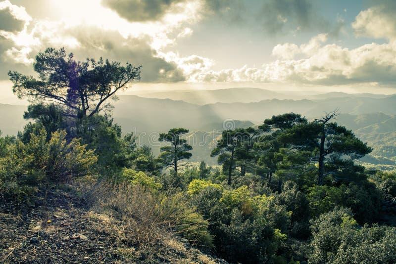 Pano Platres i Troodos berg, Cypern royaltyfria bilder