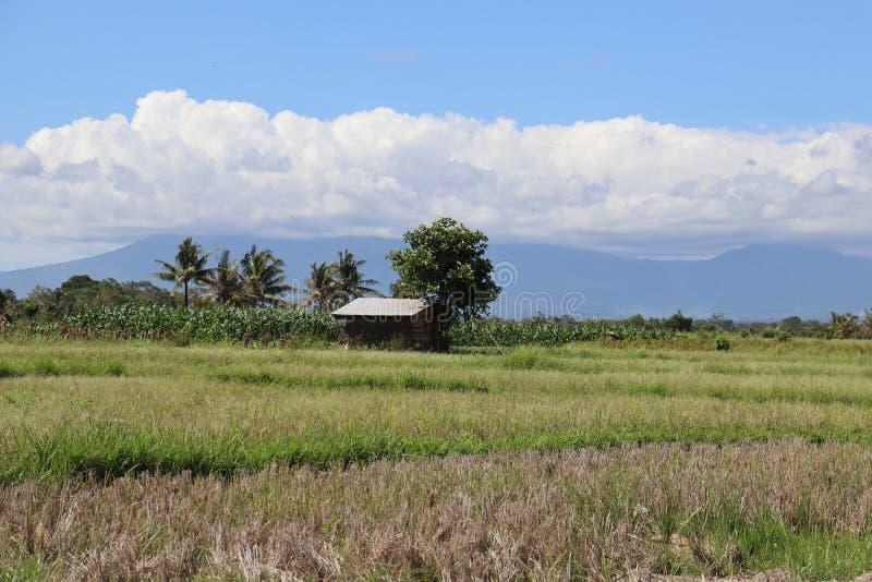Panoram Farmland sky, Bali ora splendida 2 fotografia stock