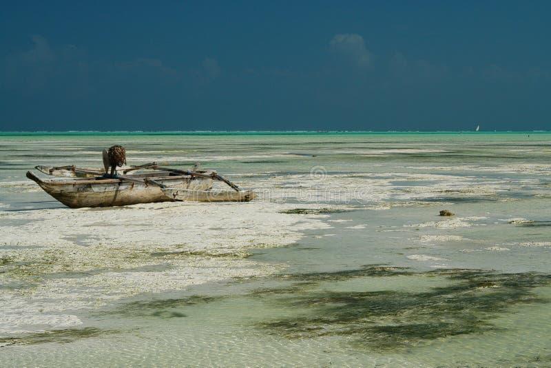 Panorama- ändlös sikt över vit sand på grönt vatten för turkos med trätraditionella dausegelbåtar - Paje strand, Zanzibar arkivbild