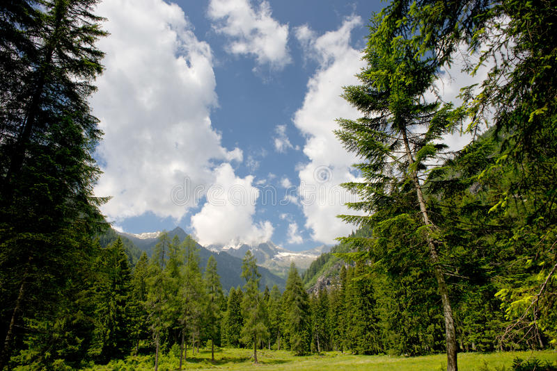 Panorama énorme de Trentino Italie photos stock