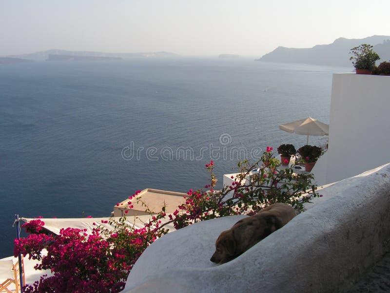 Panorama stock fotografie
