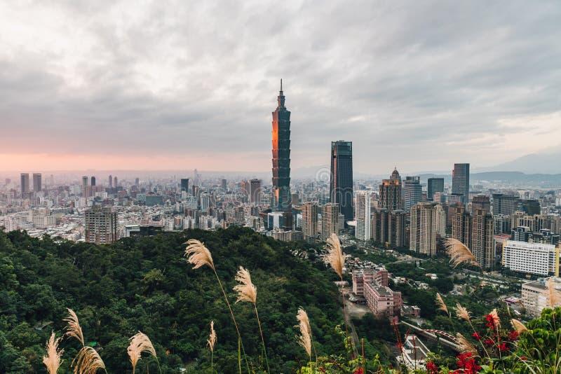 Panorama aéreo sobre Taipei do centro com o arranha-céus de Taipei 101 com flor da grama e árvores na montanha no primeiro pla imagens de stock