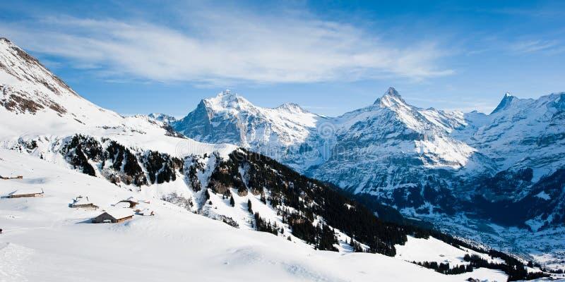Panorama acima de Grindelwald no inverno fotografia de stock royalty free