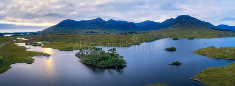 Panorama aereo dell'isola dei pini nel lago Derryclare fotografia stock libera da diritti