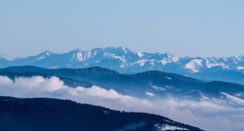 Panorama alto das montanhas de Tatras do inverno do monte do hora de Lysa em montanhas de Beskids na república checa fotografia de stock