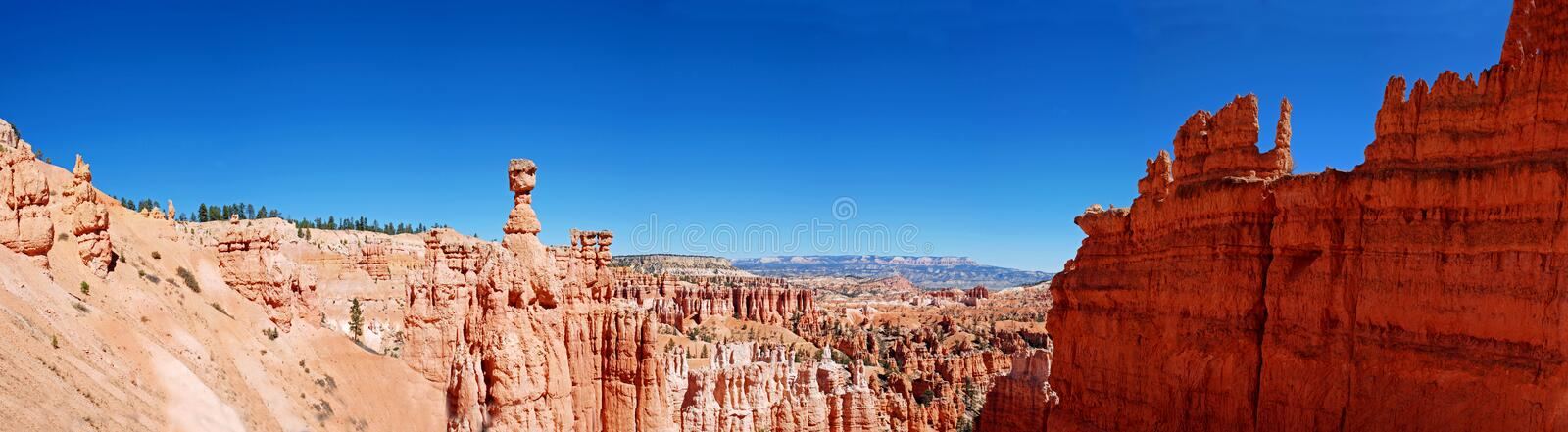 Panorama of amphitheatre in Bryce Canyon, Utah royalty free stock photos