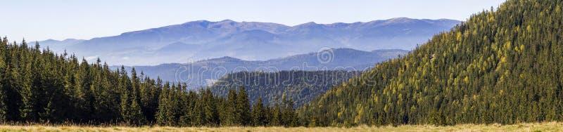 Panorama amplio de las colinas verdes de la montaña en tiempo claro soleado Paisaje de las montañas cárpatas en verano Vista del  imagenes de archivo