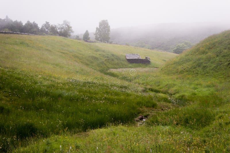 Panorama amplio del prado de niebla hermoso Niebla densa sobre una corriente en un prado y siluetas de los árboles en la mañana t fotos de archivo libres de regalías