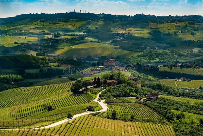 Panorama amplio del rregion del langhe en Italia septentrional con los viñedos foto de archivo